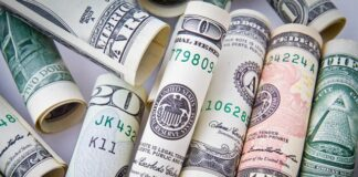Dollar Gains and Remains Steady